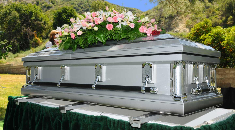 Life Art Coffin